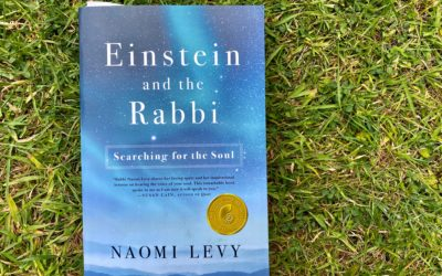 Inspiring Reading Book Review: Einstein and the Rabbi by Naomi Levy